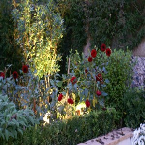 garden lighting spike spots Hunza