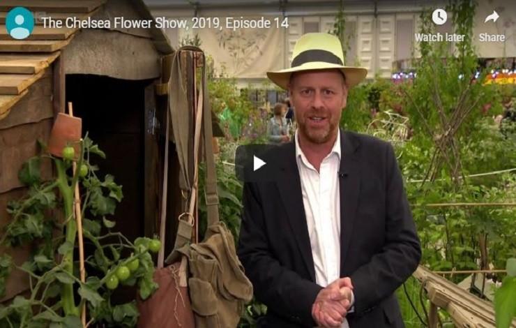 Owl Lighting on BBC - Chelsea Flower Show